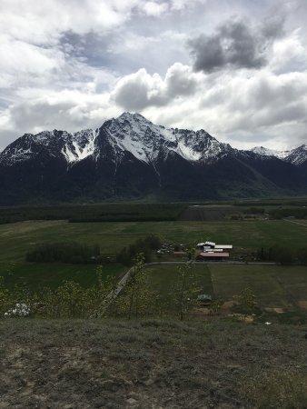 Palmer, AK: Great view of Pioneer Peak