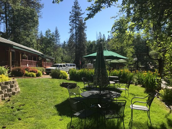 Yosemite Riverside Inn: photo1.jpg