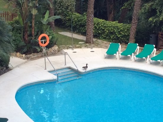 Hotel Sultan Club Marbella Costa Del So