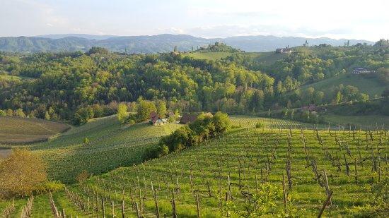 Gamlitz, Austria: Die Südsteiermark