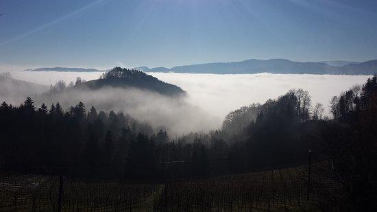 Gamlitz, Austria: Nebelstimmung am Wurzenberg
