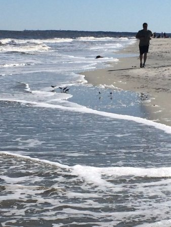 Νησί St Simons, Τζόρτζια: Walking along the East Beach