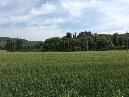 Magione, Italien: La Capanna Dei Borgia - Country House -