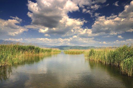 Republic of Macedonia: Healthy sludge