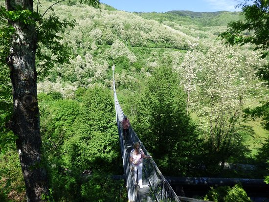 San Marcello Pistoiese, Italië: Bridge and woodland