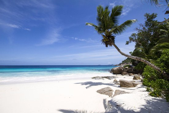 Four Seasons Resort Seychelles: пляж