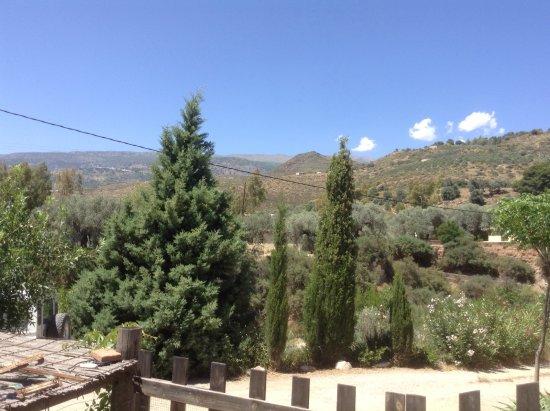 Orgiva, Spagna: Photos taken at the tea garden last Saturday