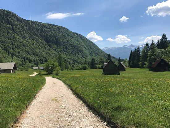 Srednja vas v Bohinju, Slovenien: photo1.jpg