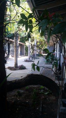 Phalaborwa Picture