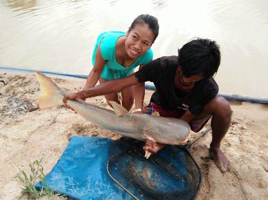 Rawai, Tajlandia: Mekong Catfish Chalong Fishing Park