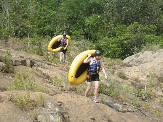 Hazyview, Sudáfrica: Carrying the gecko's