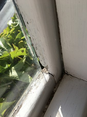Cleobury Mortimer, UK: Glass not fixed into window frame. Dangerous to open