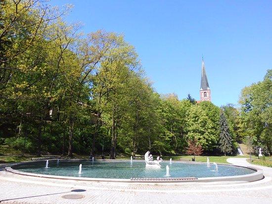 Olsztyn, Polonia: Fontana