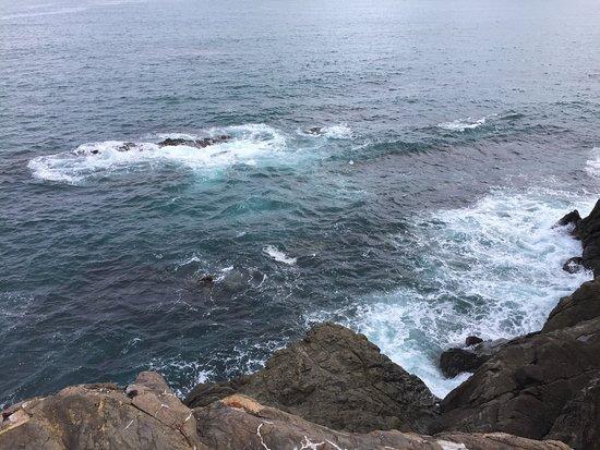 Katsurahama Beach: photo3.jpg