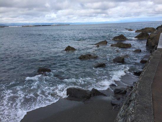 Katsurahama Beach: photo8.jpg