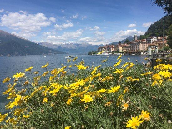 Lombardy, Italy: photo0.jpg