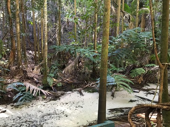 นุซา, ออสเตรเลีย: photo3.jpg