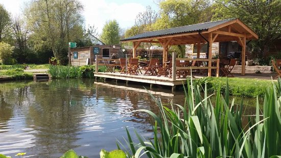 Muddiford, UK: Our tea deck in front of the cafe overlooking the fish ponds