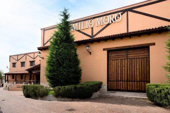 Emilio Moro Winery