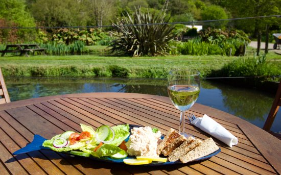 Muddiford, UK: A light lunch of smoked trout pate enjoying the view