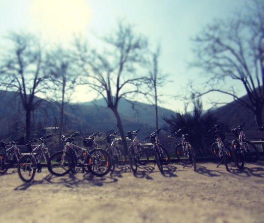 Mellow Vélos