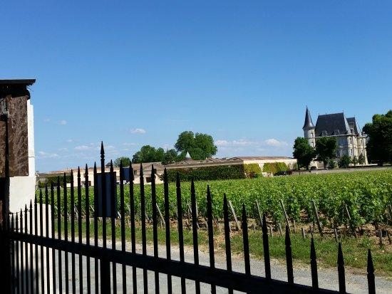 Le Coeur des Vignes