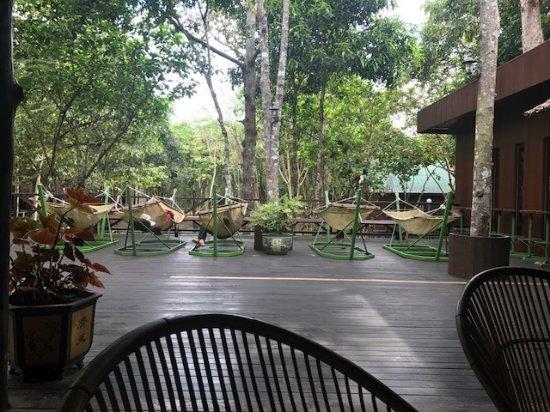Bilit Rainforest Lodge Foto