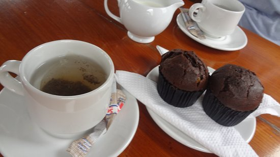 Ceres, South Africa: Tea and muffins whilst travelling towards Robertson