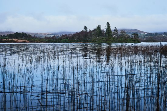 Eas Dun Lodge: Lough Eske