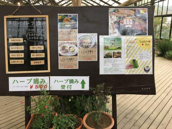 Otaki-machi, Japão: 大多喜ハーブガーデン