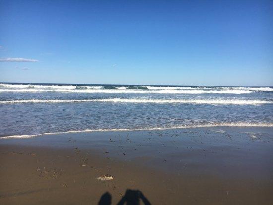 Newbury Beach Photo