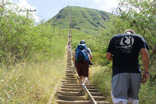 Koko Crater Trail: photo1.jpg