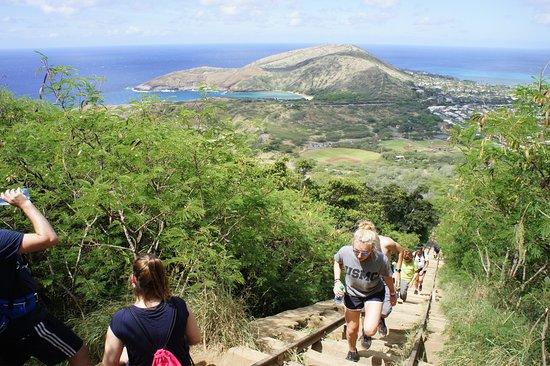 Koko Crater Trail: photo2.jpg