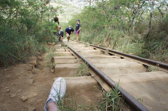 Koko Crater Trail: photo3.jpg