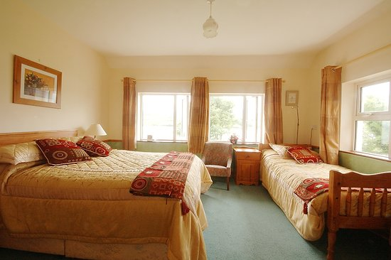 O'Connor's Guesthouse Photo
