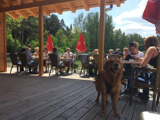Tiefenbronn, Germany: Sonnen Terrasse im Mai 2017 des NEUNZEHN03