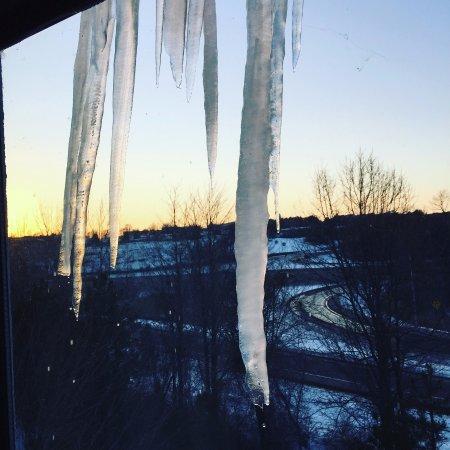 South Burlington, VT: Viwe from the  window