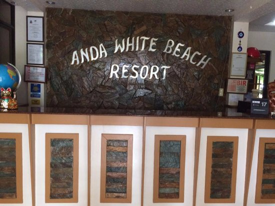 Anda White Beach Resort Photo