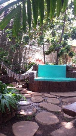 El Jardin Del Hostal Oasis Nueva Remodelacion Picture Of Hostal El