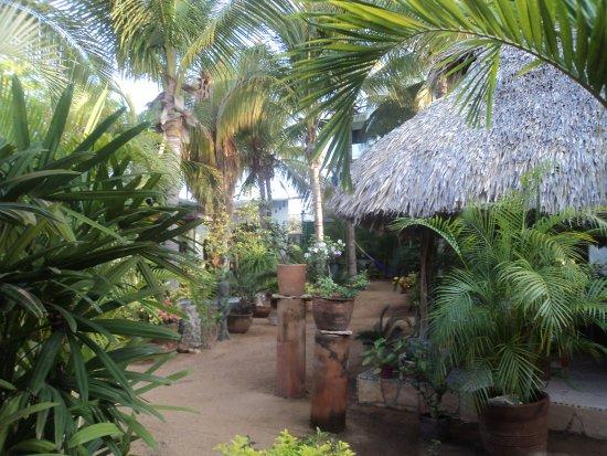 Villa Mozart y Macondo: estancia en viila Mozart y macondo
