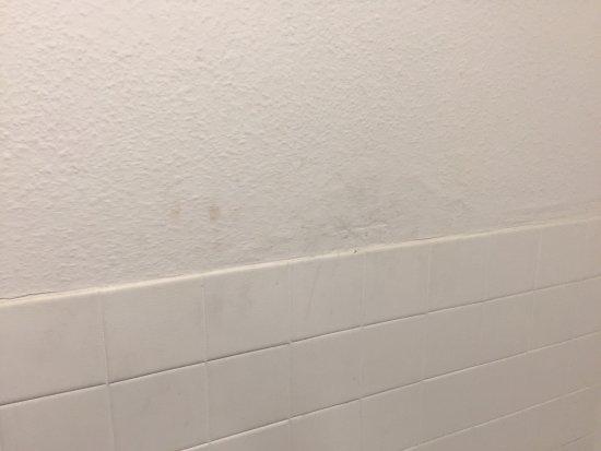 Ambassador Hotel: Room 202 shabby and dirty
