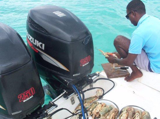 Club Med Albion Villas - Mauritius: Dégustation de langouste sur le bateau qui nous a emmené à l'île du Bénitier