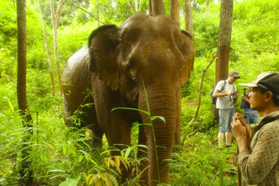 Sen Monorom, Camboja: Eye to eye with Princess