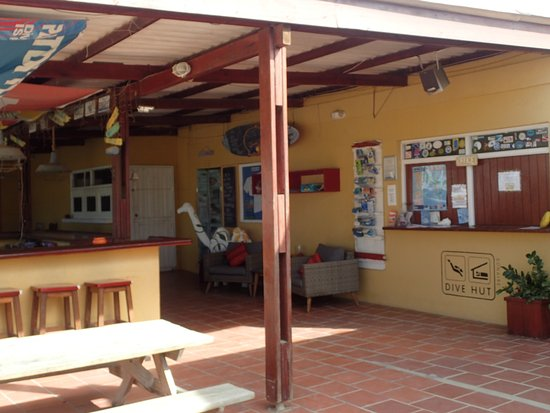 The divehut updated 2018 hotel reviews price - The dive hut bonaire ...