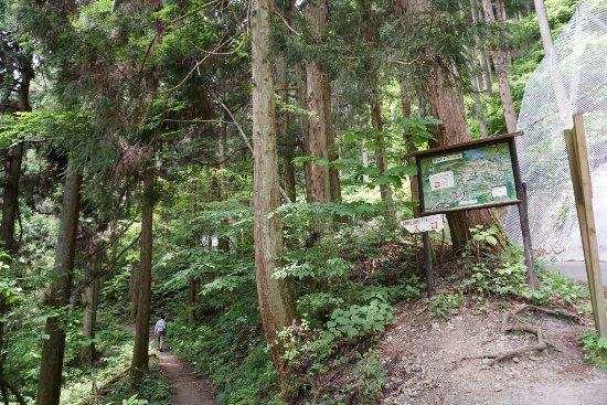 Kanto, Japan: photo3.jpg