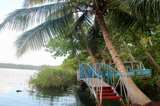 Sarovaram Ayurvedic Backwater Health Centre: By the lake
