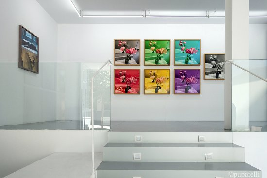 Galeria Adora Calvo