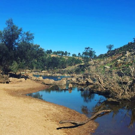 Brigadoon, Australia: photo0.jpg