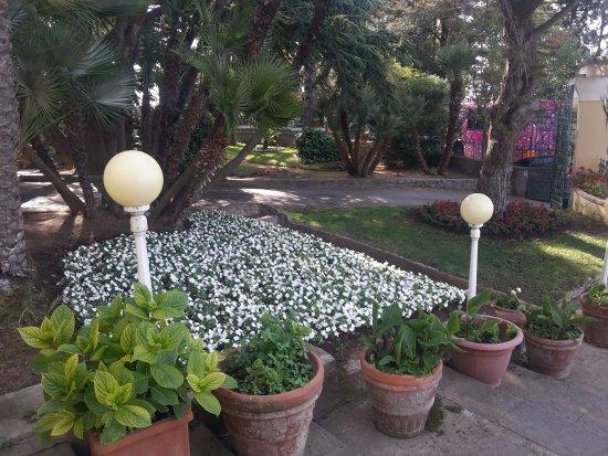 Hotel San Michele: Parte del giardino