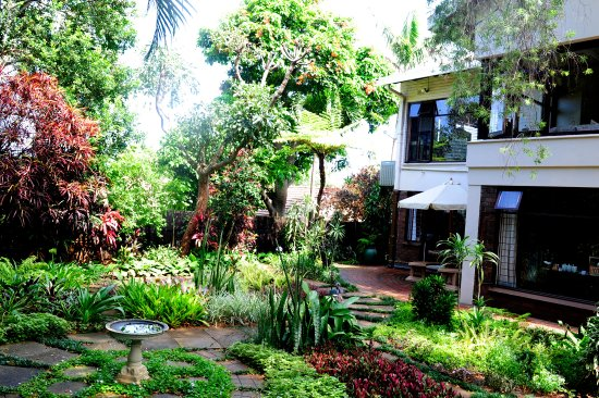 Berea, แอฟริกาใต้: Rooms overlook lovely subtropical garden.